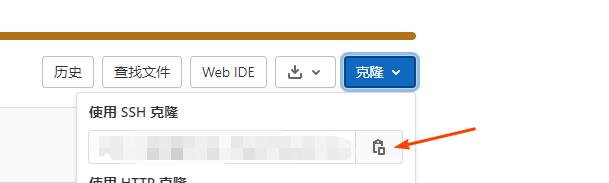 复制克隆项目地址.png